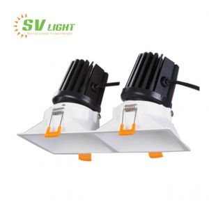 Đèn led multiple light 2x10W SVF-0137