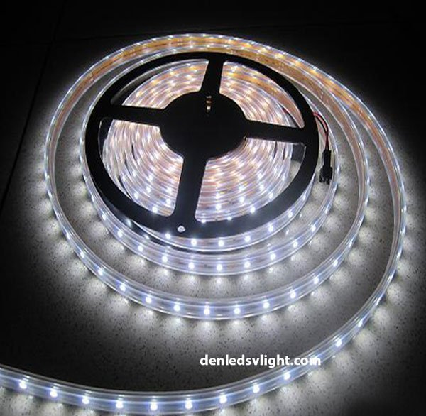 đèn led dây ánh sáng dịu nhẹ